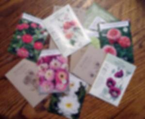 seed packets2.jpg
