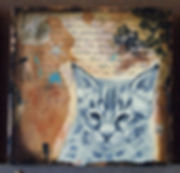 bobcat kitten drawing in collage