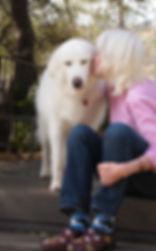 Kaaren Poole artist and dog Fiona