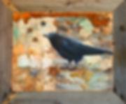crow small framed.jpg