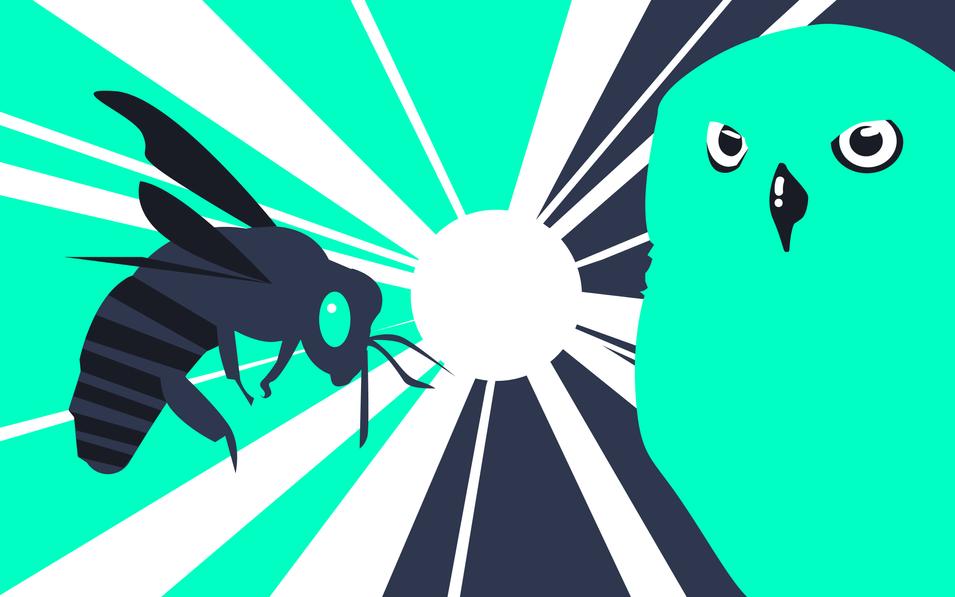 bee vs owl illustration