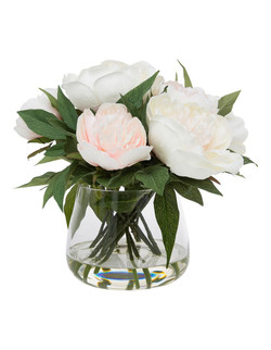 MYER PEONY IN GLASS