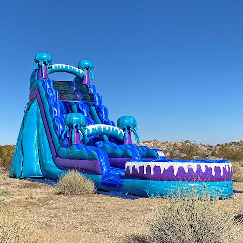 Water Slides | Sunshine Inflatables