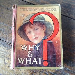 Childrens  'The Wonder Book' £16