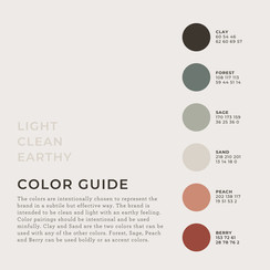 Color Guidelines