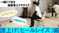 ヒールレイズ サムネ.jpg