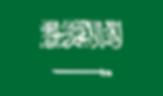 saudi-518637_960_720.png