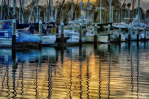Santa Barbara Reflection
