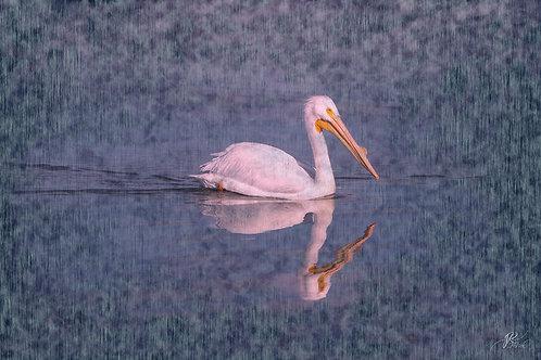 Pelican Mist