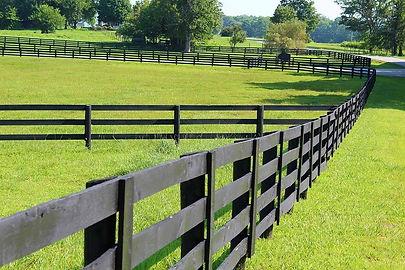 Oak Grove Farm AndEquestrian Center Pastures