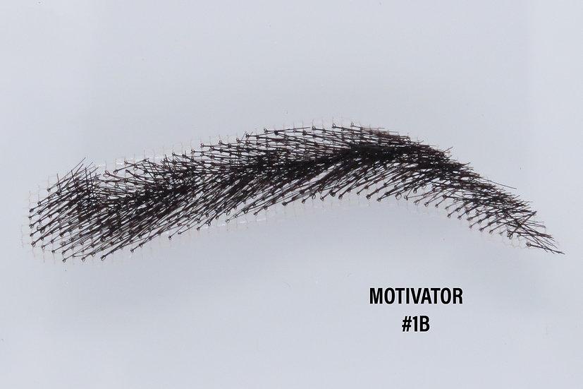 WBT BROWS - MOTIVATOR