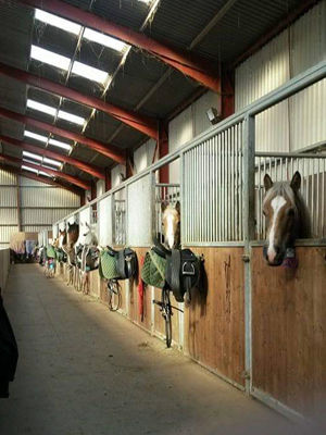 Stable-1a.jpg