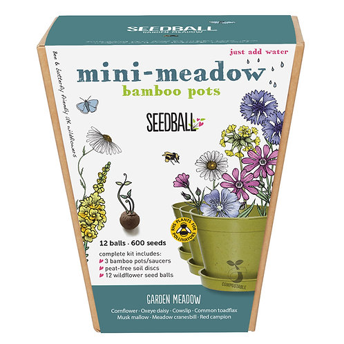 Mini Meadow Bamboo Pots - Garden Meadow Mix