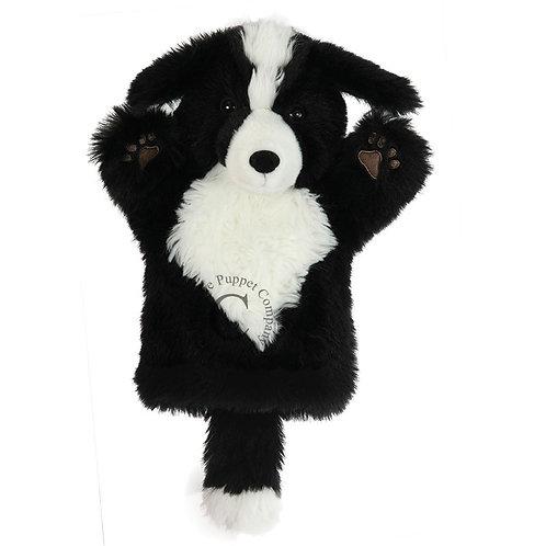 Border Collie Glove Puppet