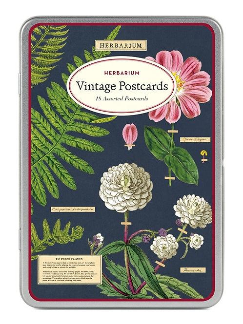 Cavallini Vintage Postcard Tin in Herbarium Design