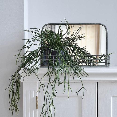 Small Mirror with Shelf