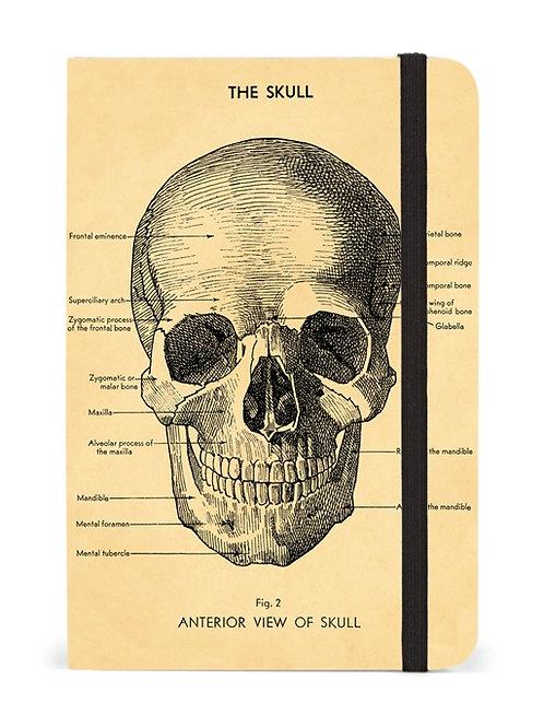 Cavallini Notebook Skull Design - Small