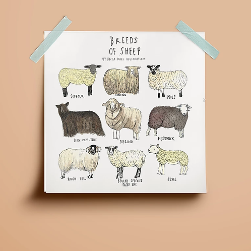 Types of Sheep Print