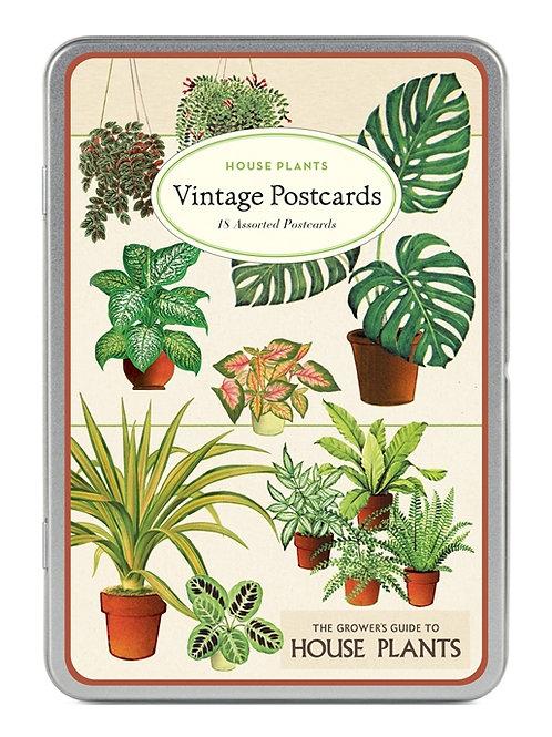 Cavallini Vintage Postcard Tin in House Plants Design