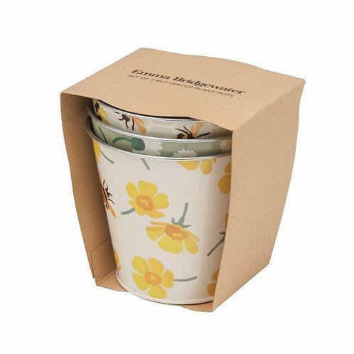 Emma Bridgewater Set of 3 Buttercup Plant Pots