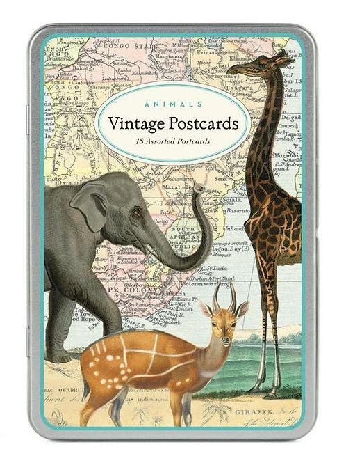 Cavallini Vintage Postcard Tin in Animals Design