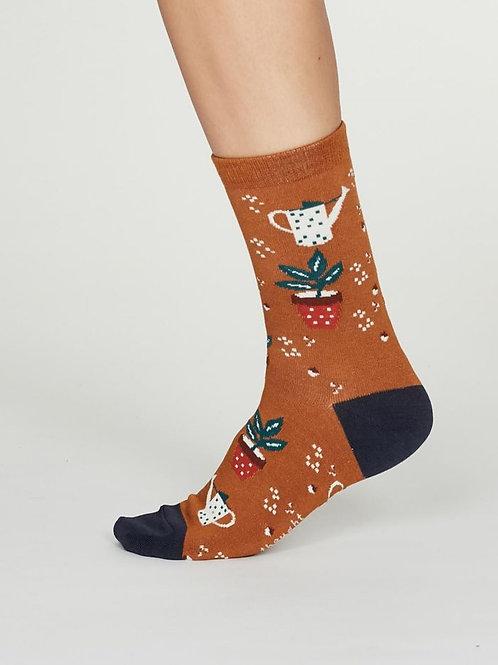 3 Pairs Ladies Thought Socks