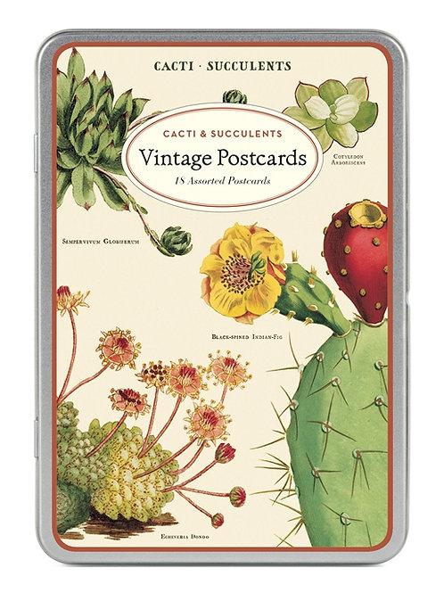 Cavallini Vintage Postcard Tin in Cacti & Succulents Design