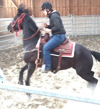 Melanie Georg reitet ein Problempferd zum ersten Mal