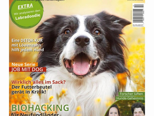 "Article in the Magazine ""HundeWelt"""