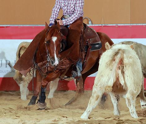 Melanie Georg mit Phelps Ninth Gold beim European Derby Cutting 2012 in Lyon