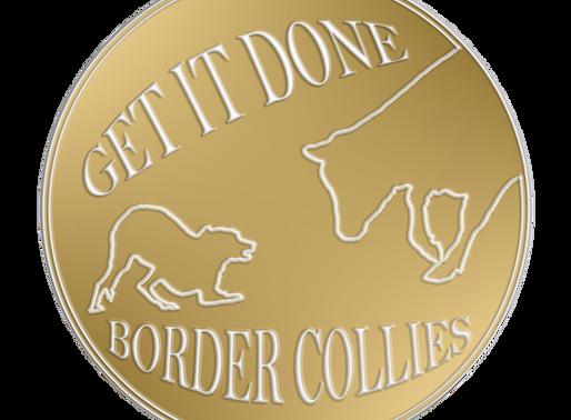 GID Border Collies hat ein neues Logo