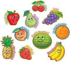 The Fruit We Produce
