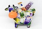 piggy-bank-3297061_640.jpg