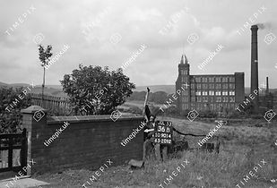View of Mill from corner of No 133 Foxholes Road, 1953