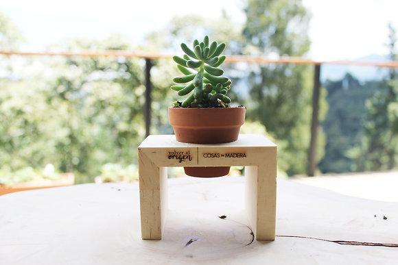 Terrario mesa