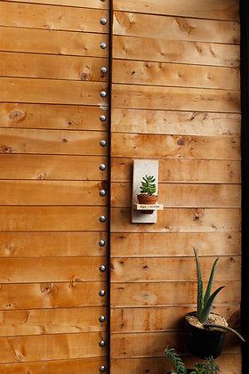 Terrario pared