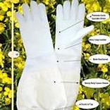 Bee gloves.jpg