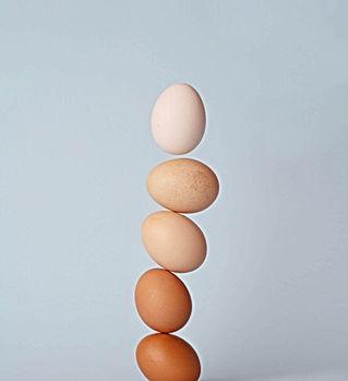 Différentes nuances d'œufs