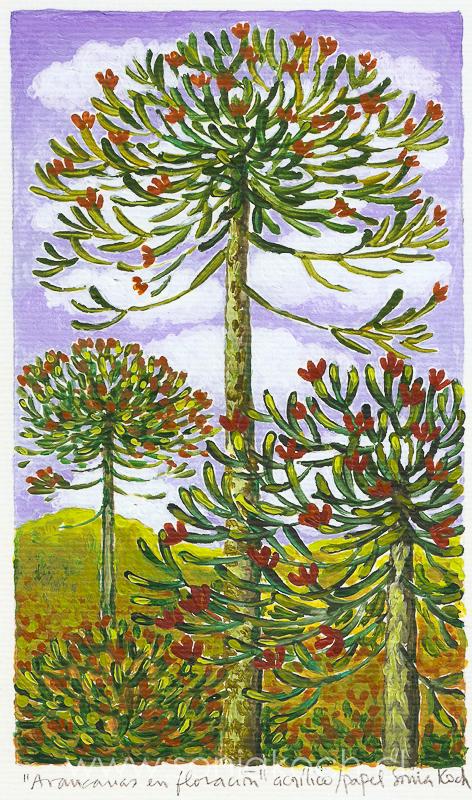 Araucarias en floración