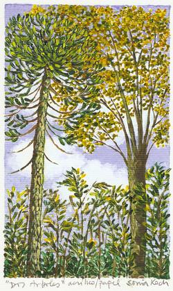 Dos árboles