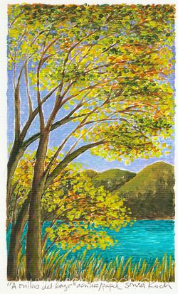 A orillas del lago