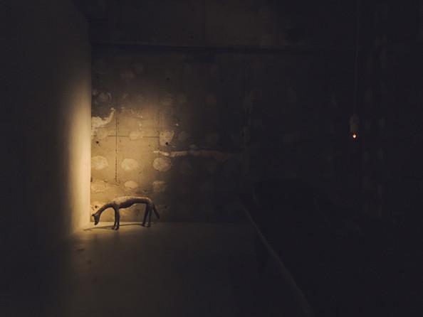 「時光 - 夜の会」 の記録