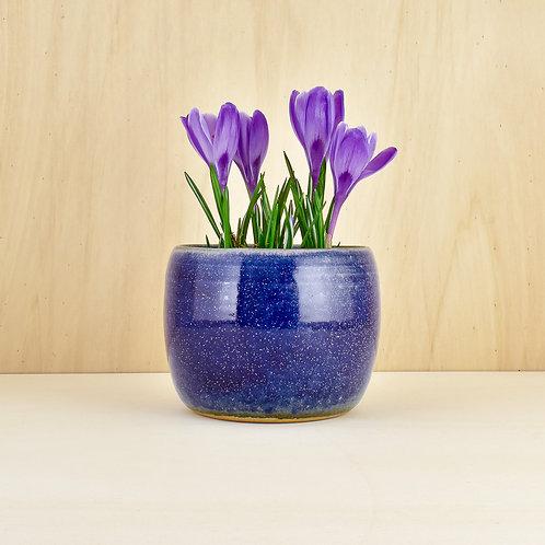 Chrpová nádoba na květináč