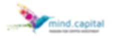 mind capital 1.PNG