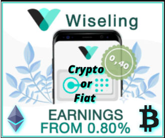 Wiseling crypto or fiat 300x250 static.j