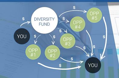 Diversity fund club model.PNG