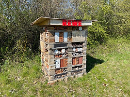 REWE_Insektenhotel.jpg