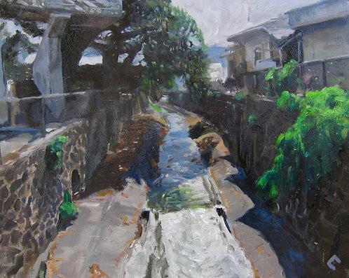Pauoa Stream Contained