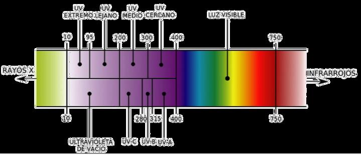 luz%20uv-c_edited.png
