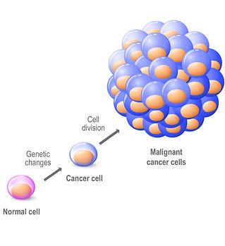 癌症如何在身體中發展